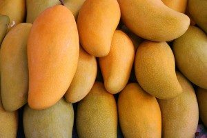 Twelve tonnes of artificially-ripened mangoes destroyed by FDA in Goa