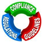 What is the process undertaken by Codex to make new standards?