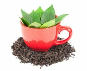 FSSAI Notification on Methods of Determination of Iron Filings in Tea