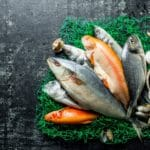 Re-operationalises Regulations in fish